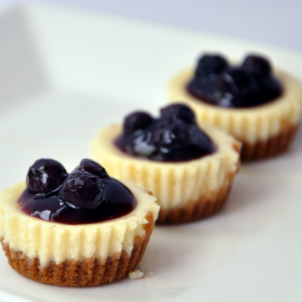 blueberry cheesecake recipe dishmaps